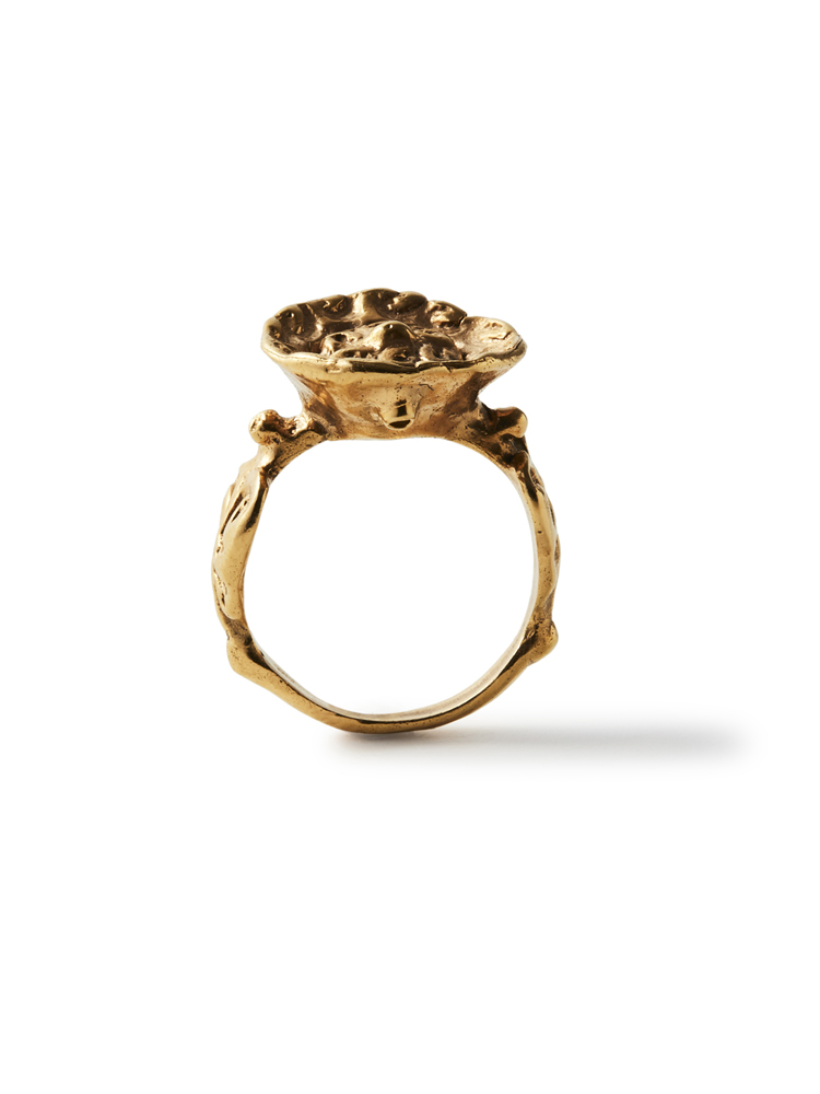 Joanne Burke</br>Ceiling Ring #8