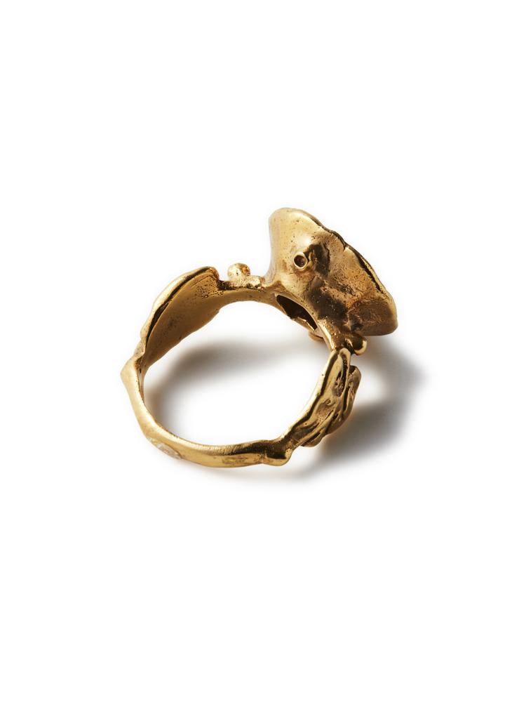 Joanne Burke</br>Ceiling Ring #10